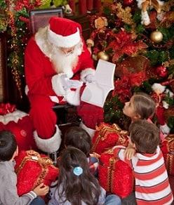 Дед мороз, снегурочка, корпоратив в Житомире